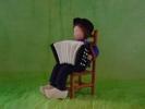 accordeonist 1