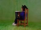 accordeonist 2