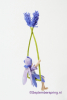 11 Lavendelschommel DSC01073