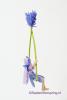12 Lavendelschommel